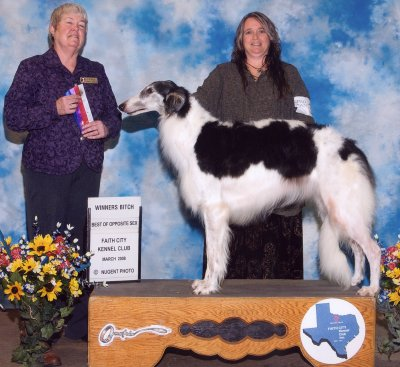 Bugg wins a major under breeder/judge Jan Leikam