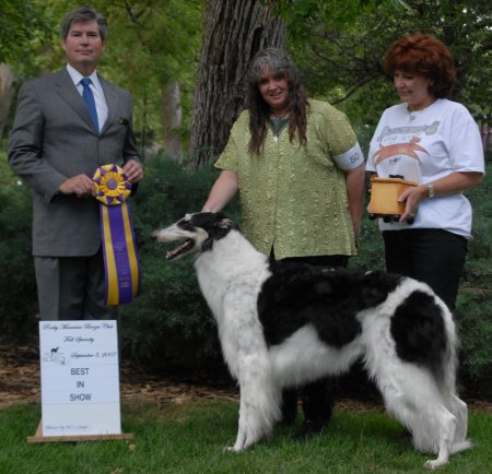 Sassi going Best in Specialty Show at the Rocky Mountain Borzoi Club fall specialty