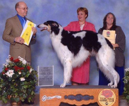 Solo - Hound Group 3 under breeder/judge Dan Dowling, Velox Borzoi