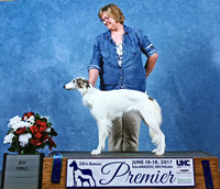 Best Female at UKC Premier