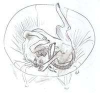 sleepsketch.jpg